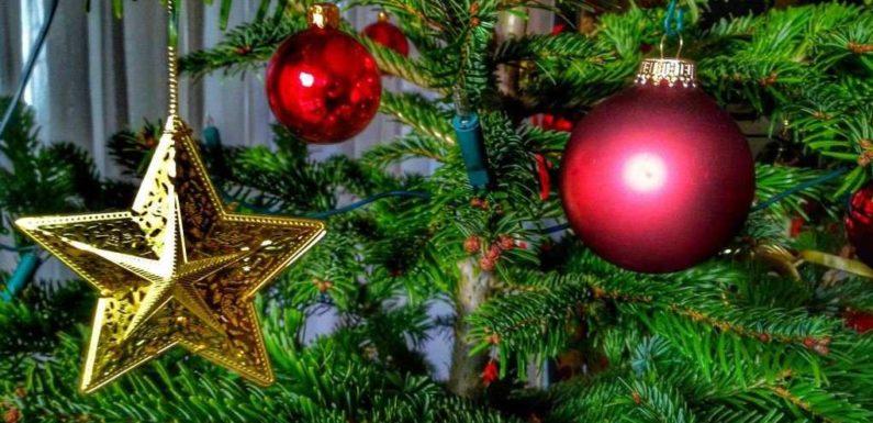 Der Weihnachtsbaum im Büro