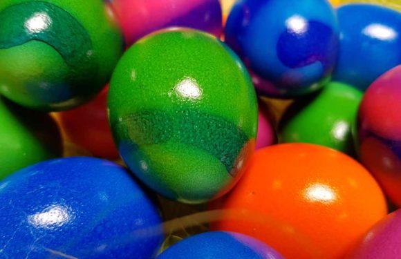 Wir wünschen allen Frohe Ostern