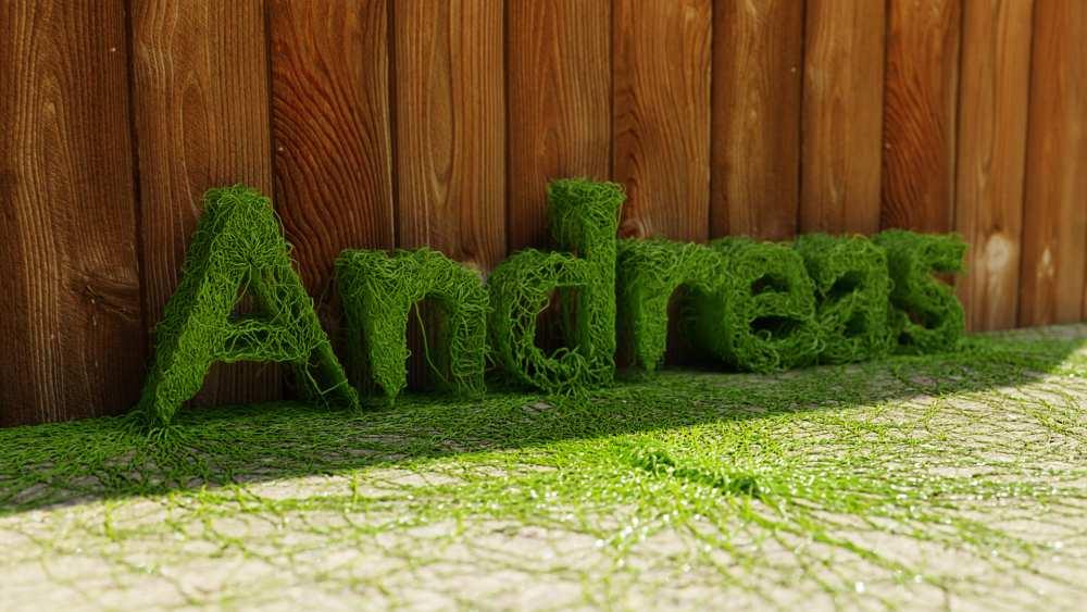 Blender Grafik - Andreas mit Wurzeln